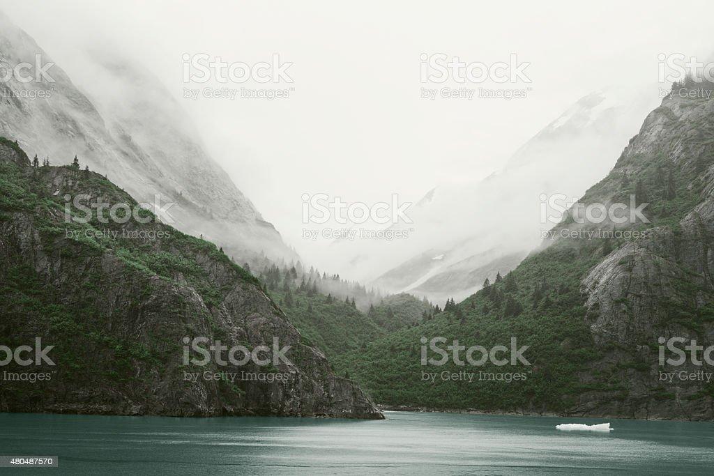 Inside Passage - Tracy Arm landscape, Alaska stock photo