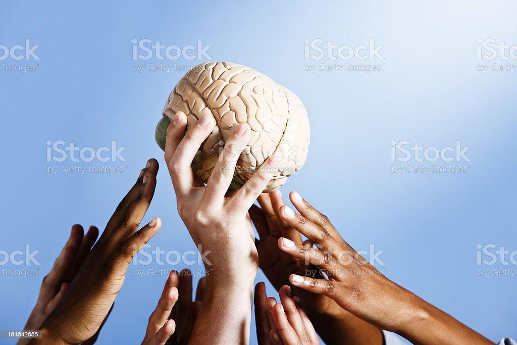 Inspiration strikes as light shines on model brain held aloft stock photo