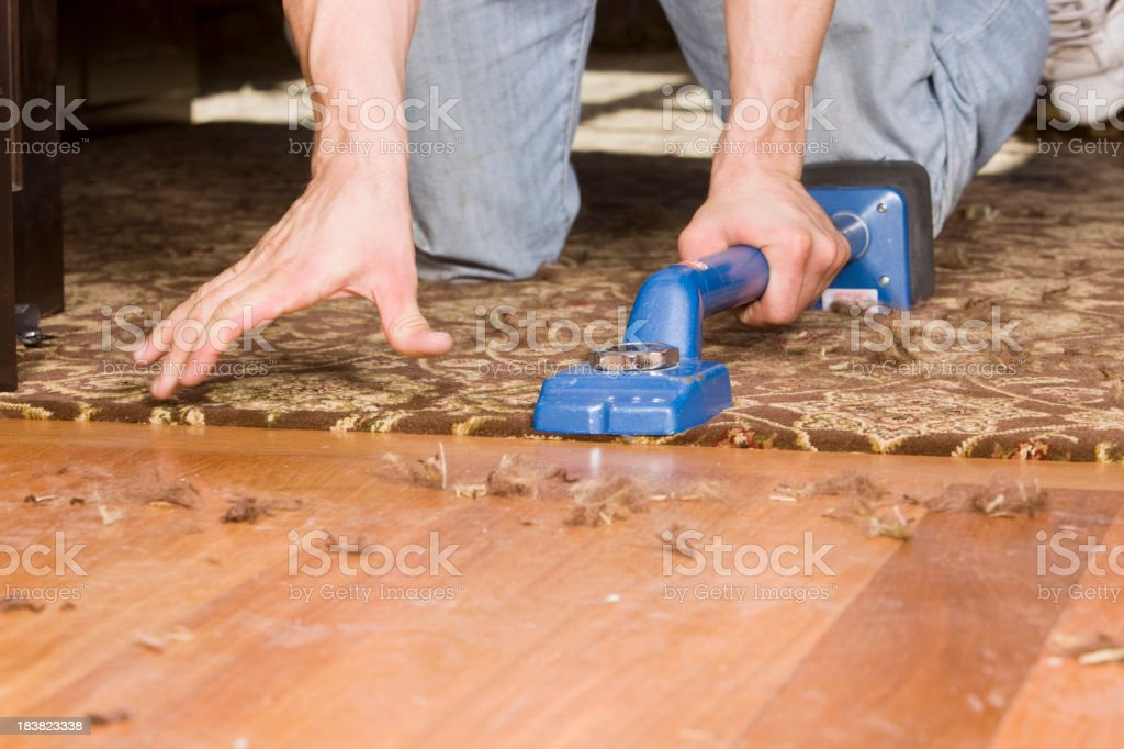 Installer Using Knee Kicker to Stretch Home Office Carpet stock photo