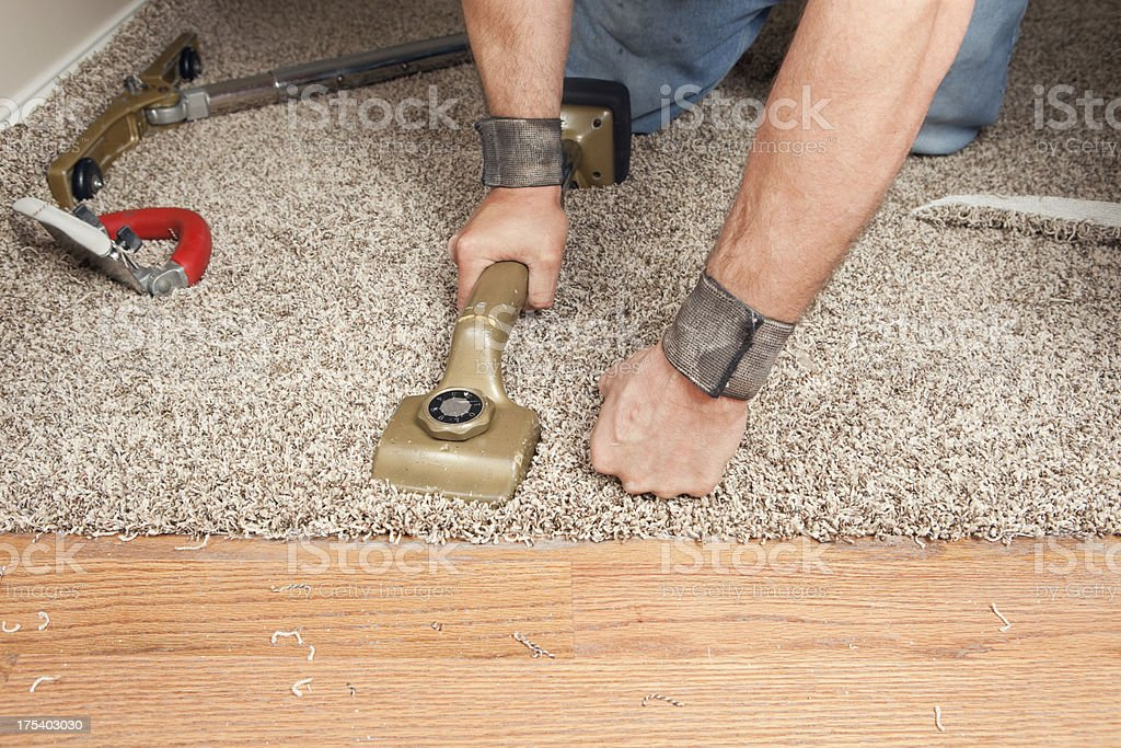 Installer Using Knee Kicker to Stretch Threshold Carpet royalty-free stock photo