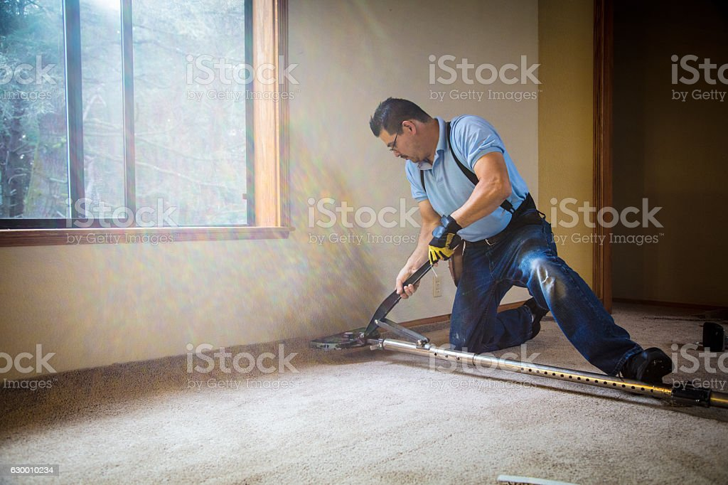 Installing Carpeting stock photo