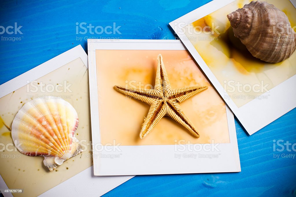 Instant Frame and Seashell stock photo