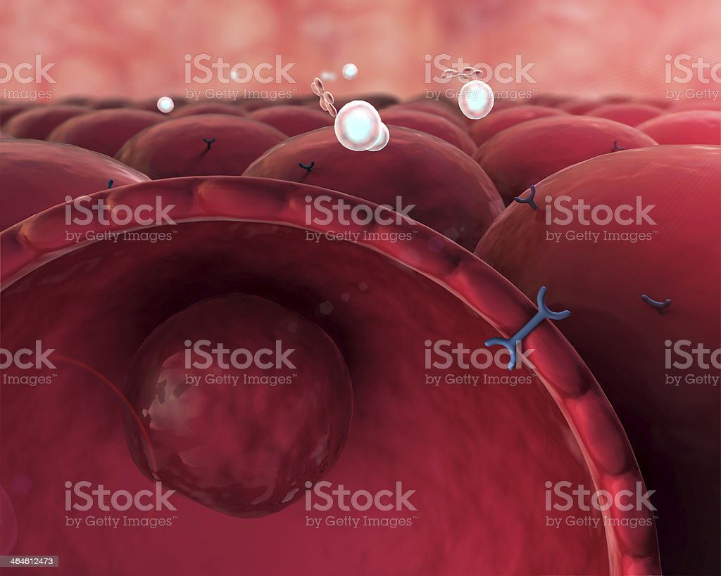 Insulin, molecule, cell stock photo
