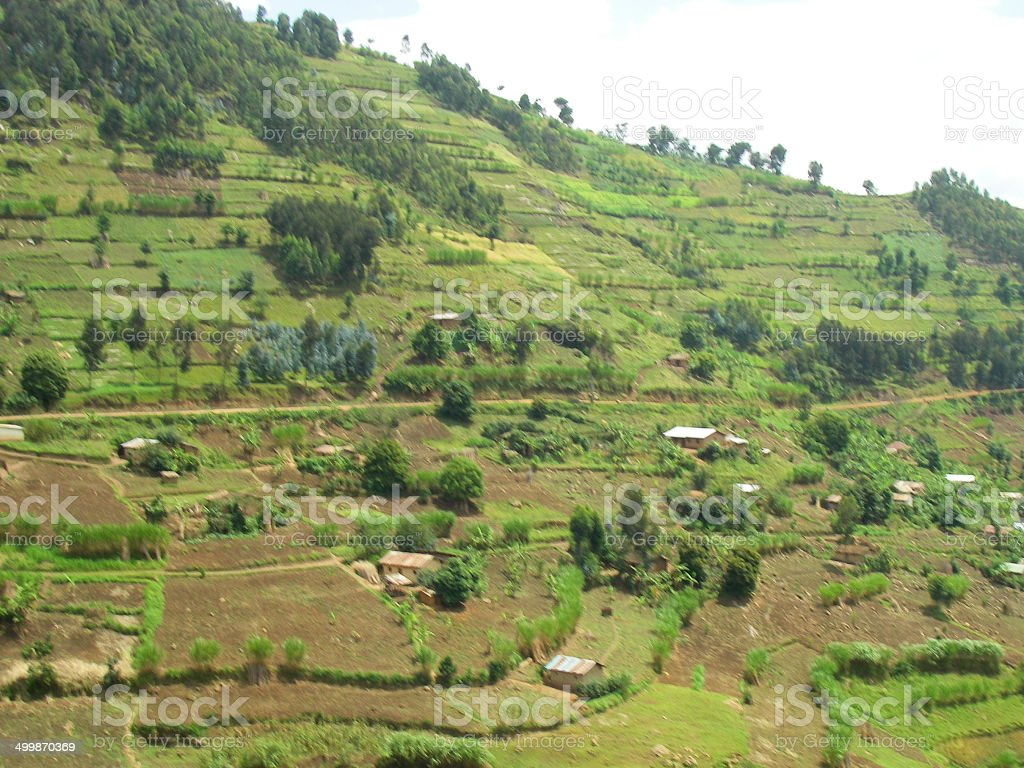 Intensive Agriculture on Steep Slopes Northwestern Rwanda stock photo