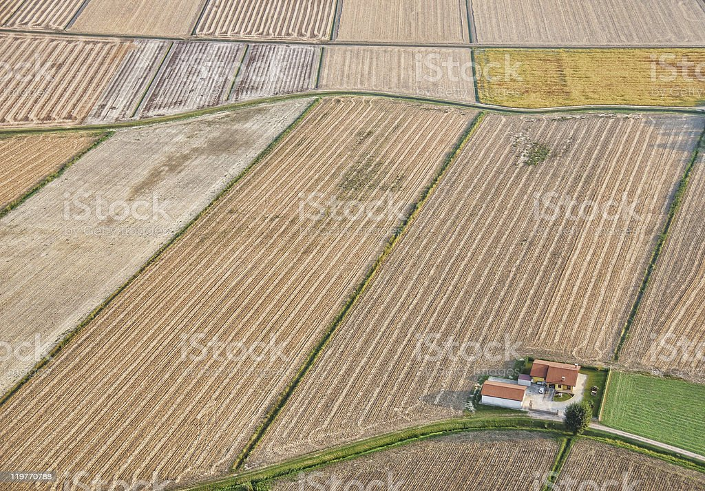 Intensive farming stock photo