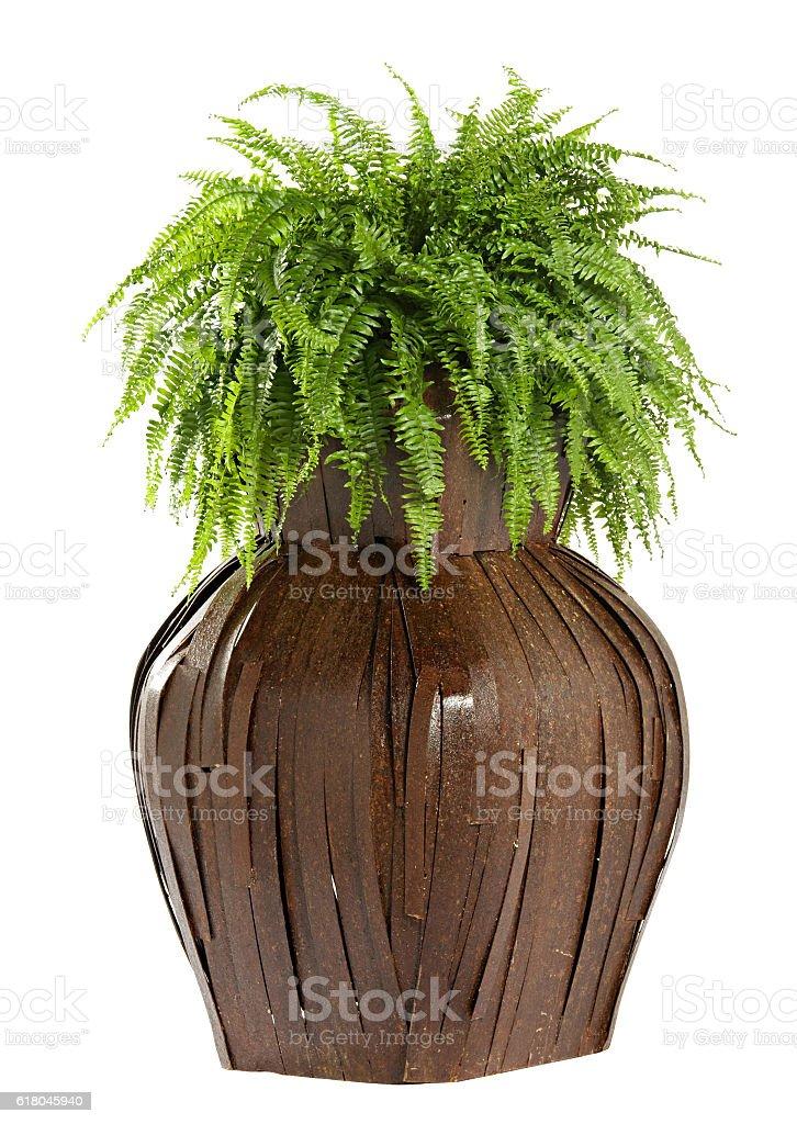 Interesting bulbous wooden flower box stock photo