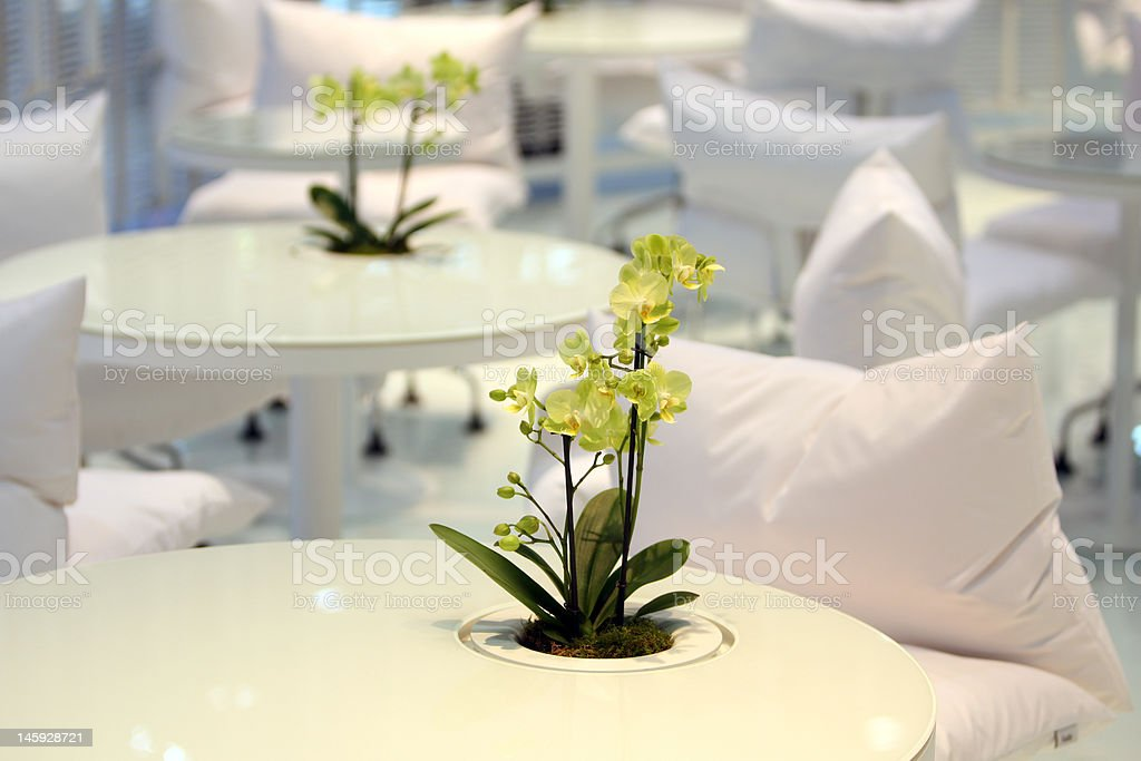 Interior Design Table royalty-free stock photo