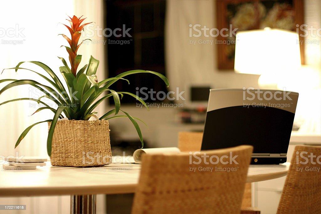 Interior Designer Lifestyle royalty-free stock photo