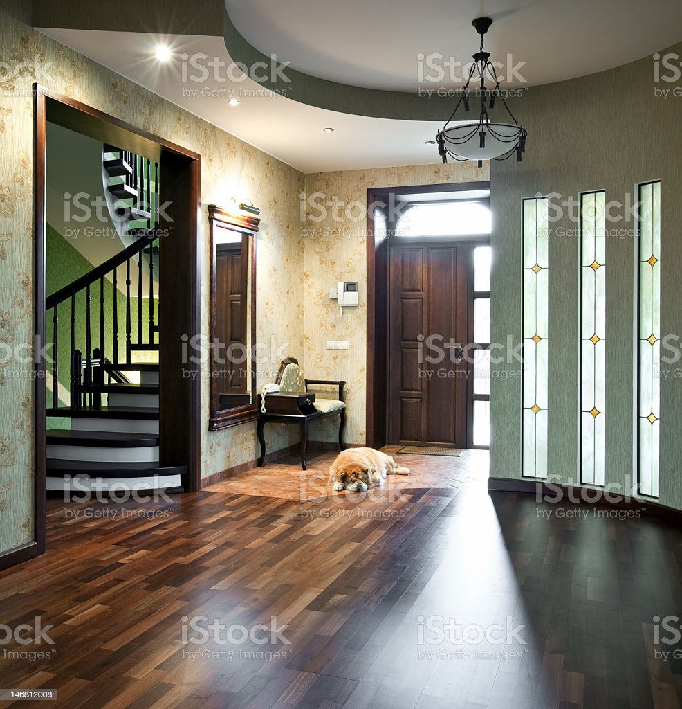 Interior of a beautiful home with a sleeping dog royalty-free stock photo