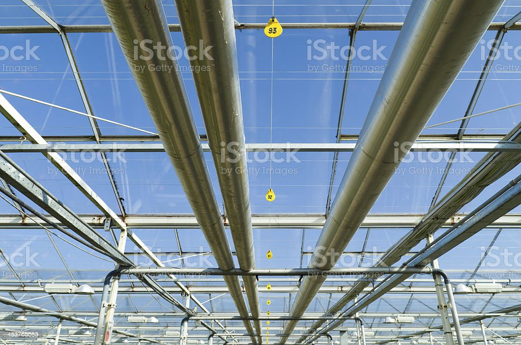 interior of a greenhouse stock photo