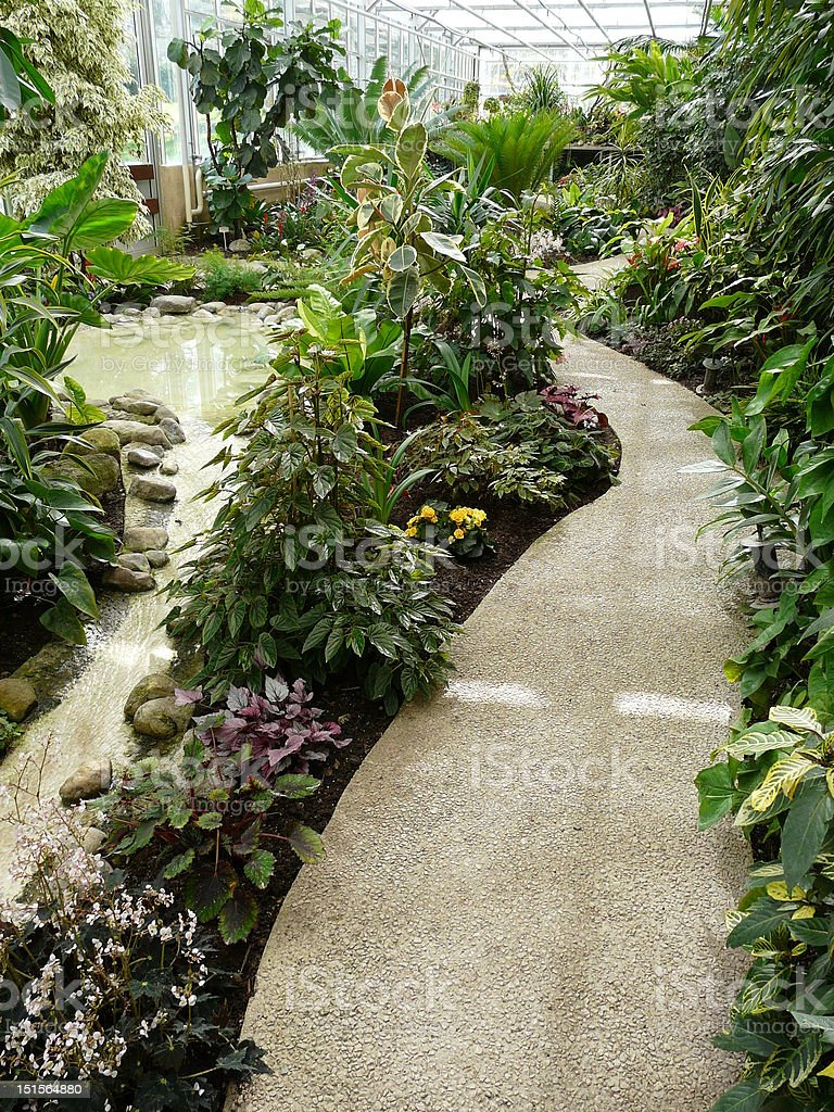 Interior Of A Tropical Greenhouse royalty-free stock photo