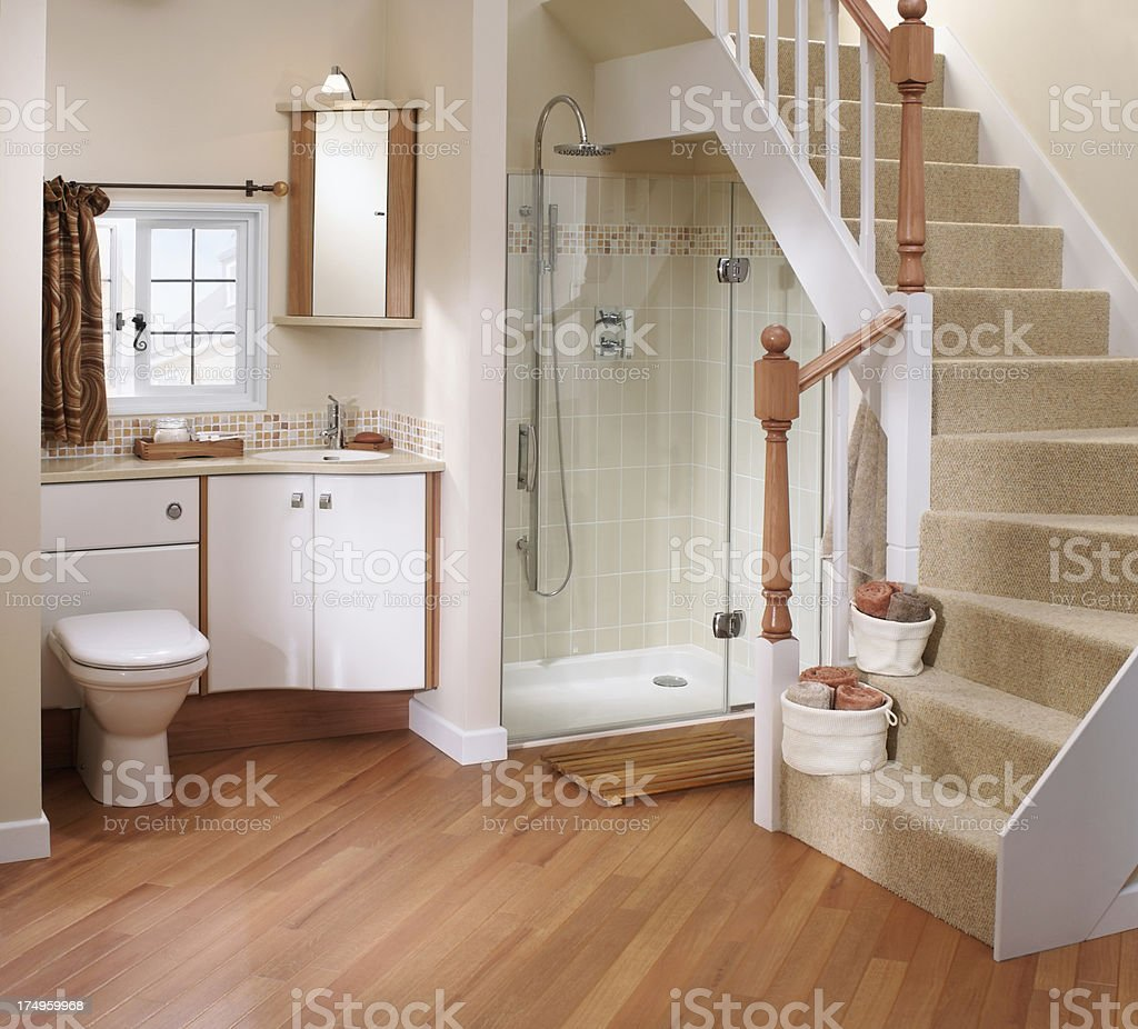 Interior of small downstairs luxurious bathroom royalty-free stock photo