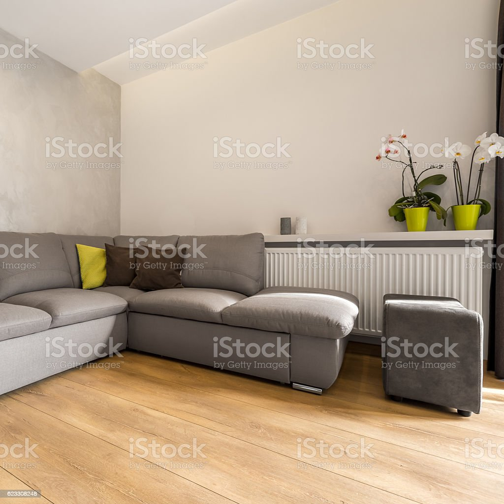 Interior with extra large sofa stock photo
