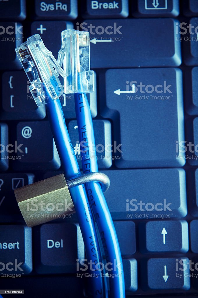 Internet and Computer Security royalty-free stock photo