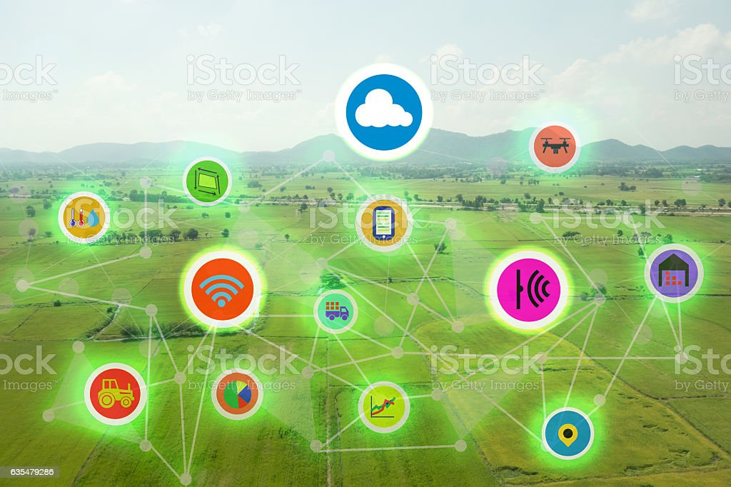 internet of things industrial agriculture,smart farming concepts stock photo