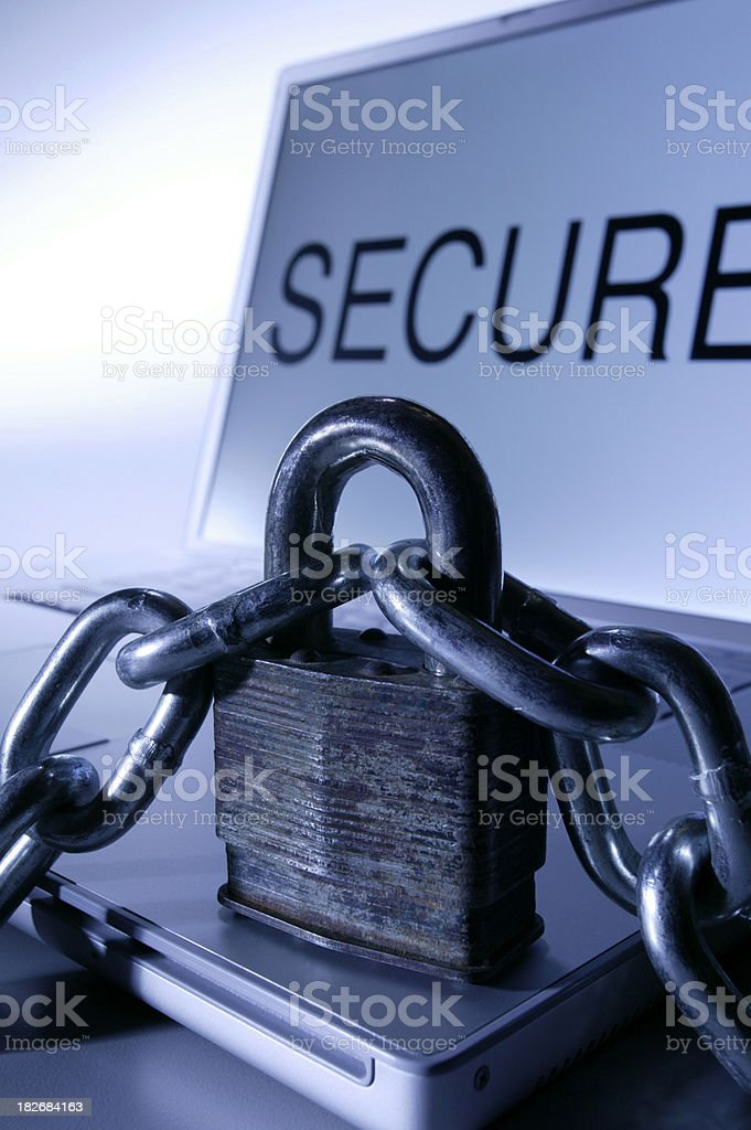 Internet Security royalty-free stock photo