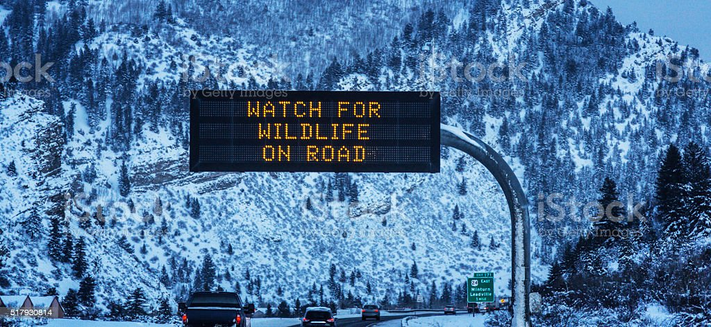 WATCH FOR WILDLIFE Interstate 70 Road Sign Near Vail Colorado stock photo