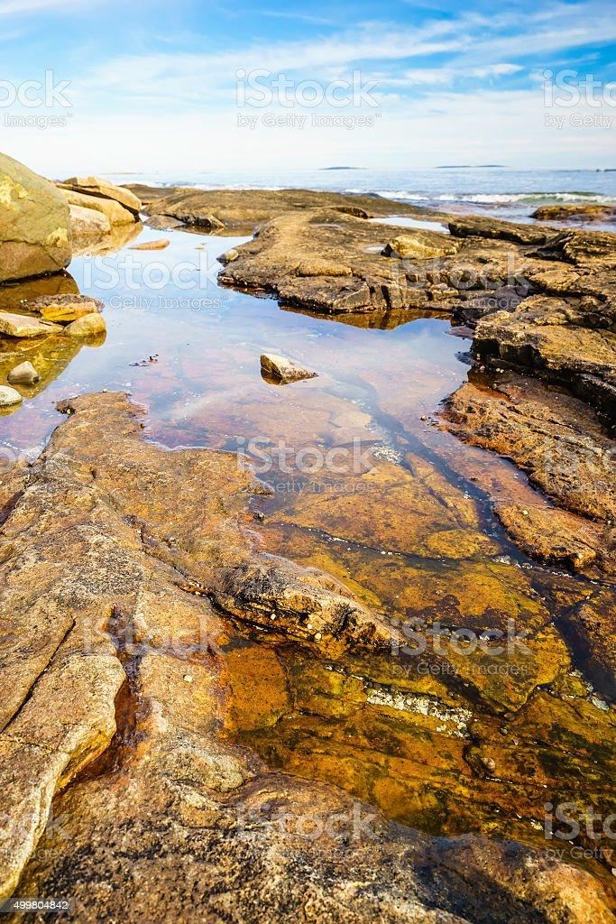 Intertidal terrain in Maine stock photo
