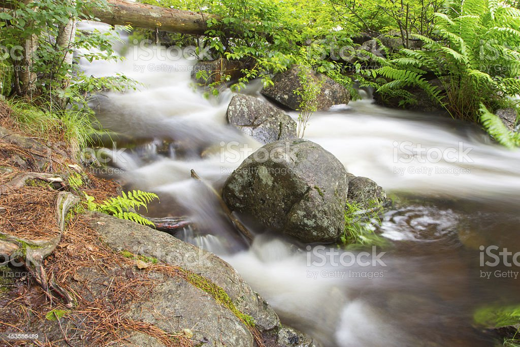 Intimate Rapids royalty-free stock photo
