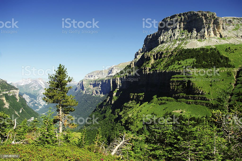 Into Ordessa Canyon royalty-free stock photo