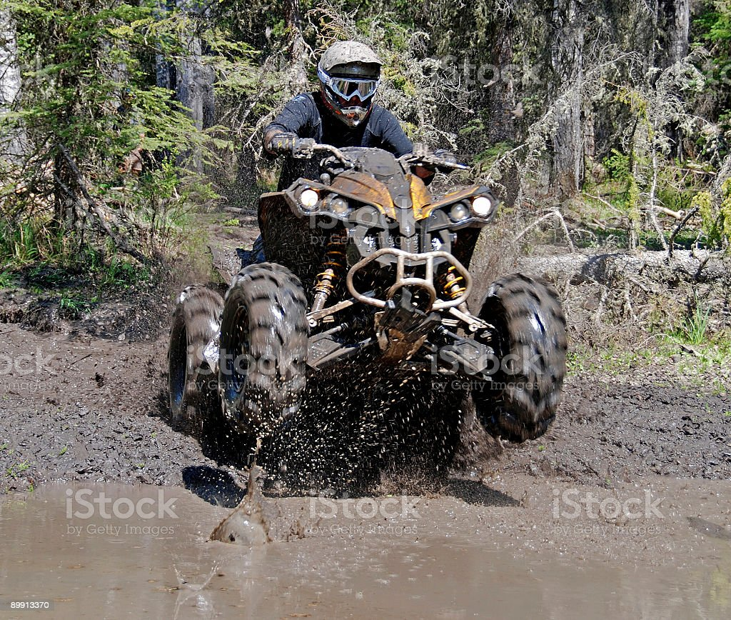Into the mud royalty-free stock photo