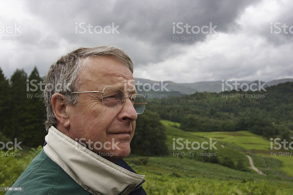 Into The Wilderness royalty-free stock photo