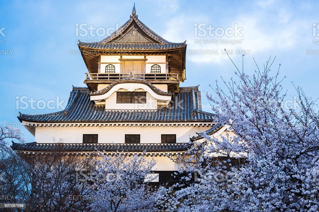 Inuyama castle historic building landmark in spring. stock photo