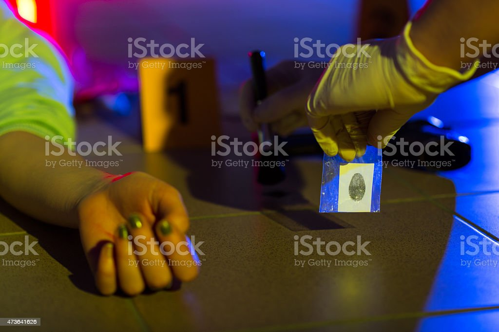 Investigator collecting evidence stock photo