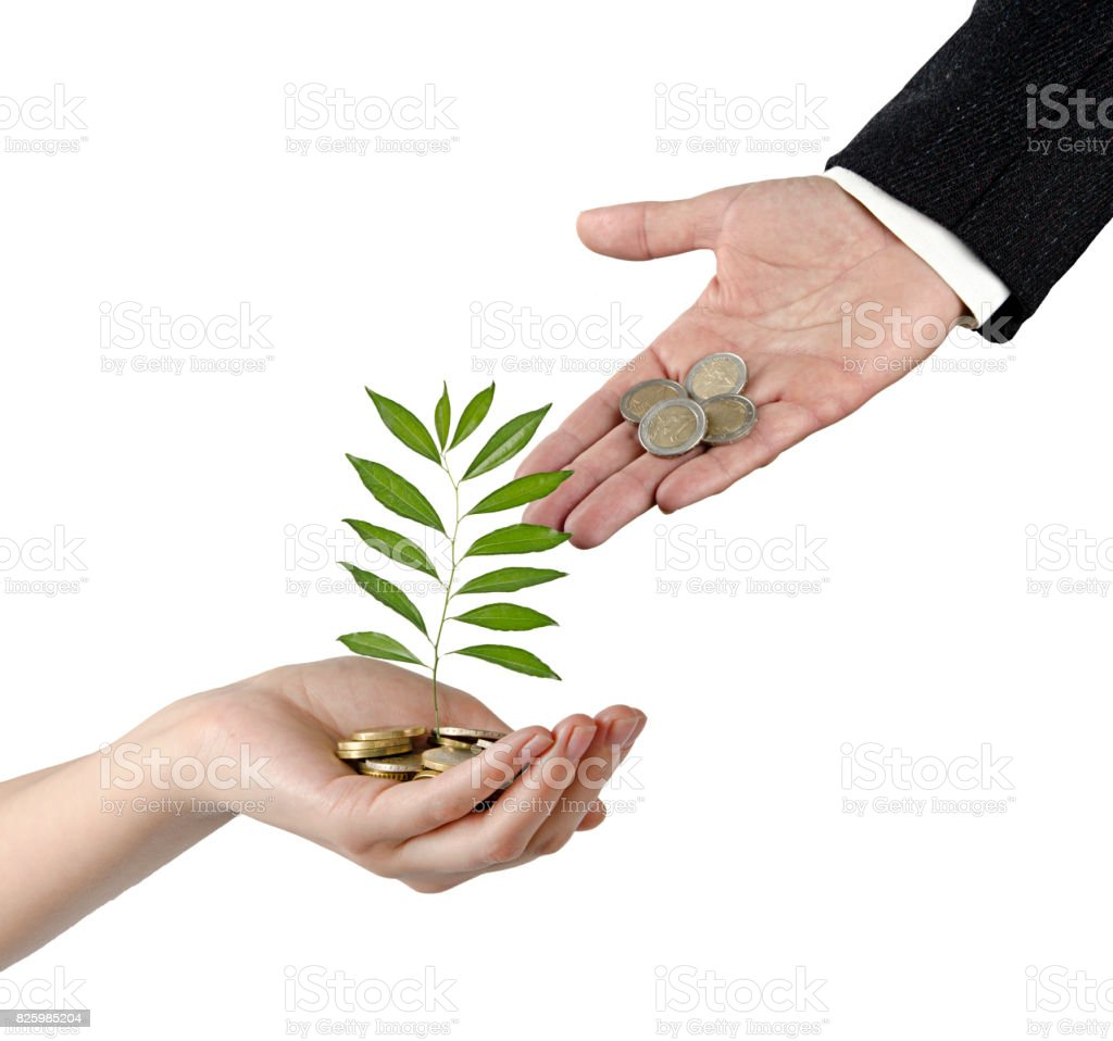 Investing to green business stock photo
