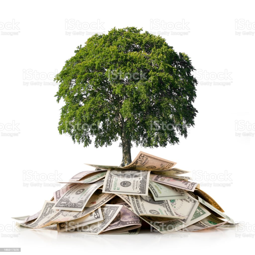 Investment and Environment. Tree on a heap of money. stock photo