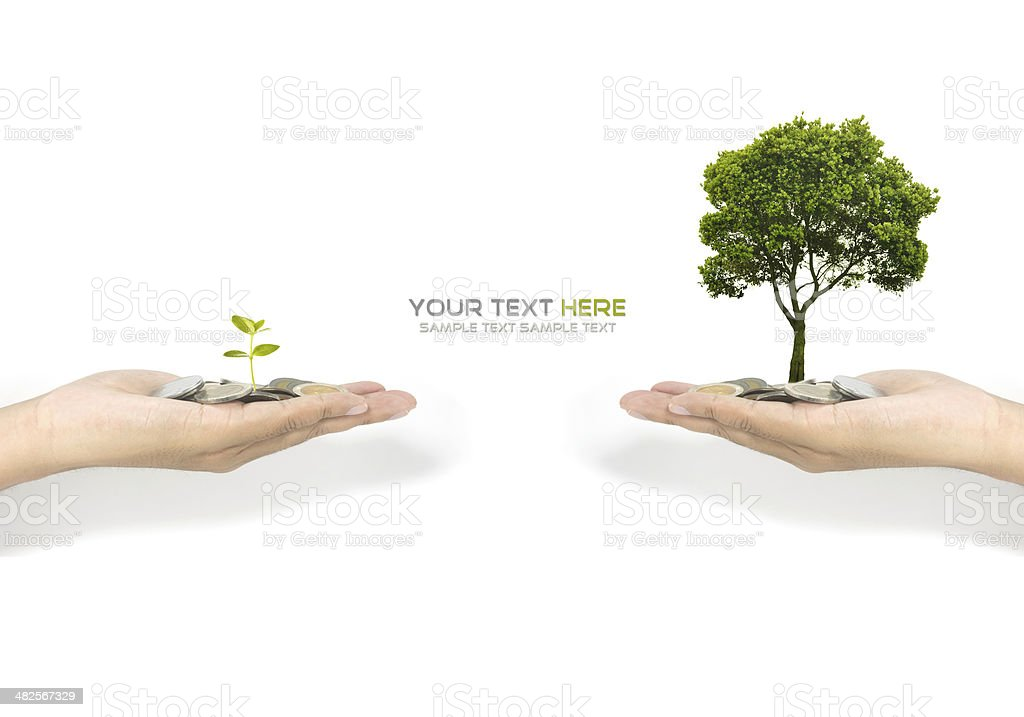investment concept royalty-free stock photo