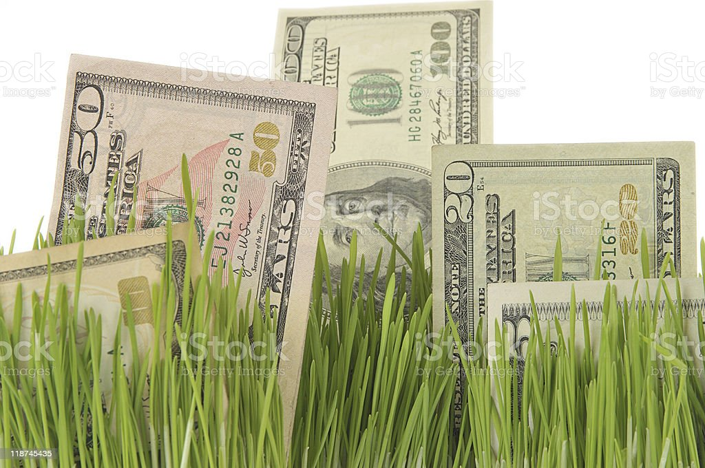 Investment field royalty-free stock photo