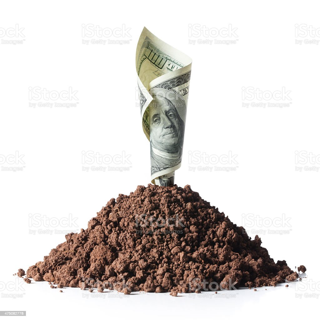 Investment. One hundred dollar bill grow from the ground. stock photo
