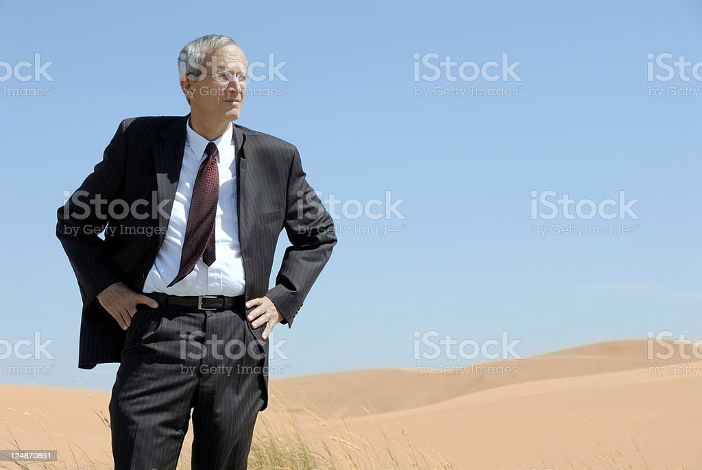 Investor Surveying Prospective Business Investment royalty-free stock photo
