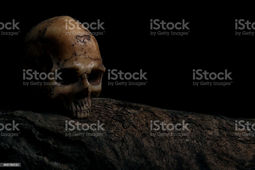 Invitation card for halloween with human skull stock photo