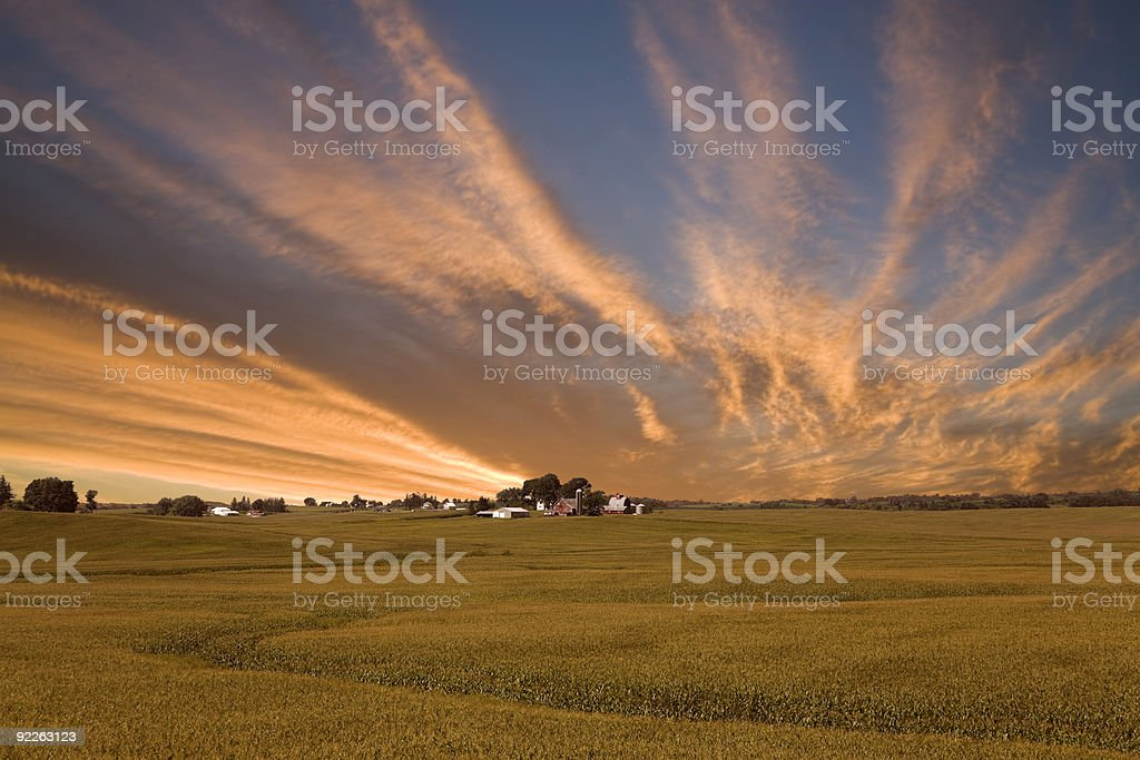Iowa Corn Field Sunset stock photo