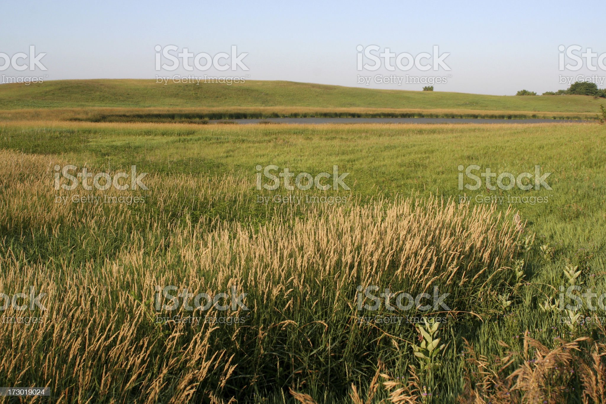 Iowa Wetland and Hilly Meadow royalty-free stock photo