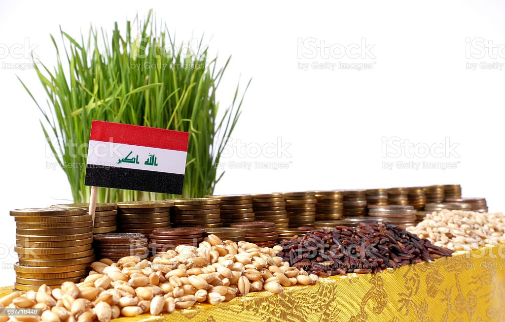 Iraq flag with stack of coins and piles of wheat stock photo