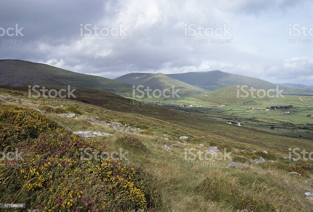 Overview of Ireland fields and mountains near Dingle, Europe