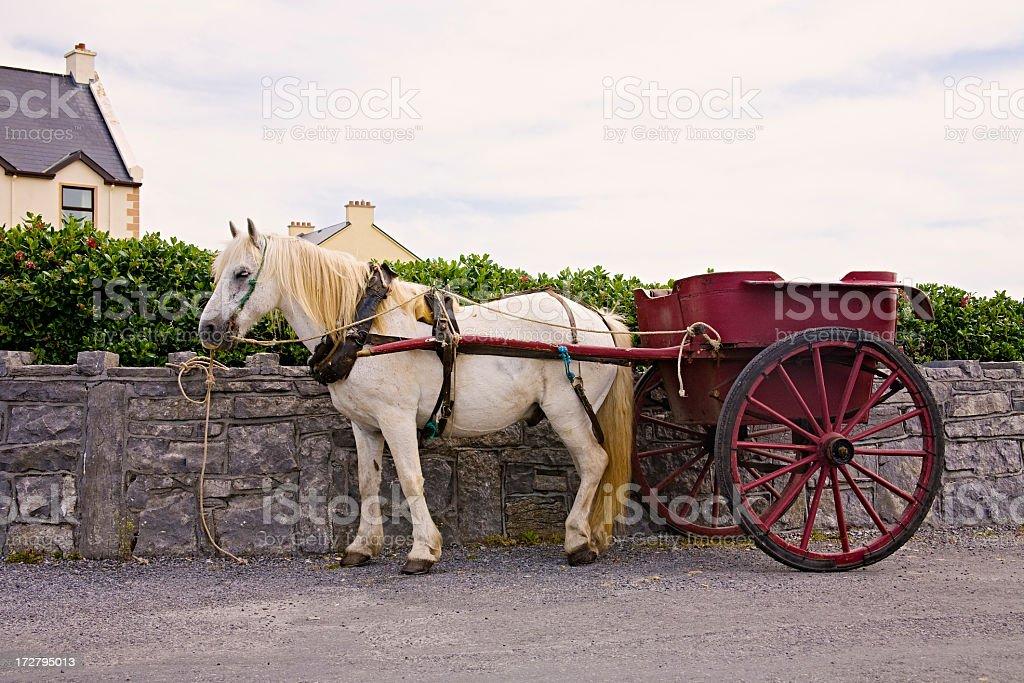 Ireland: Horse Cart on Inis Mor, Aran Islands stock photo