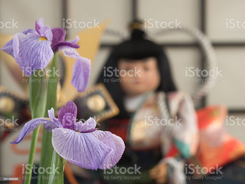 Iris and dolls stock photo