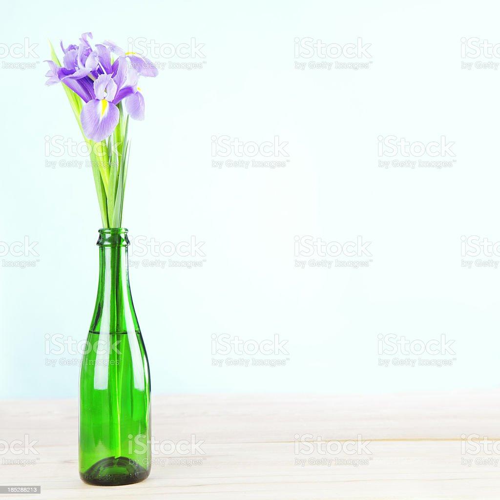 Iris Flowers in Cheap Impromptu Vase stock photo