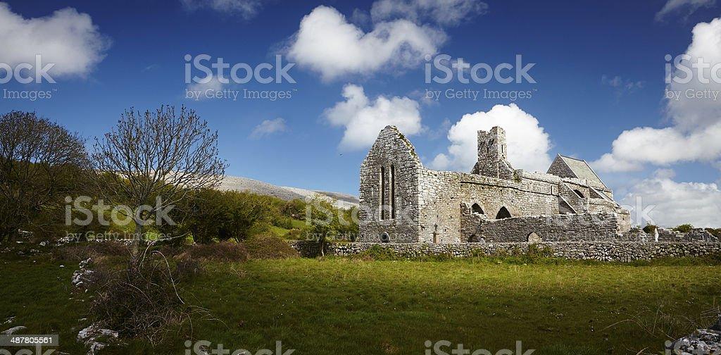 Irische Abtei Ruine royalty-free stock photo