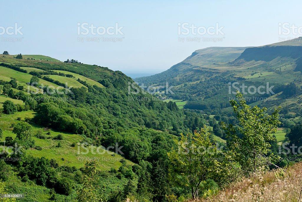 Irish green field stock photo