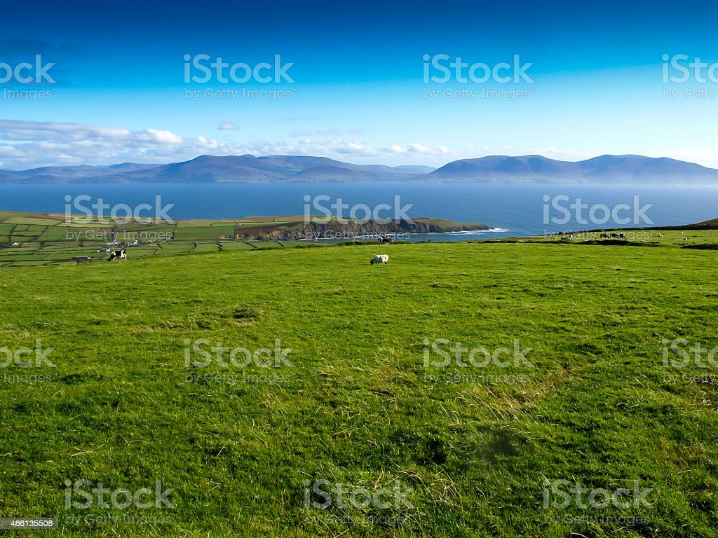 Irish impression royalty-free stock photo