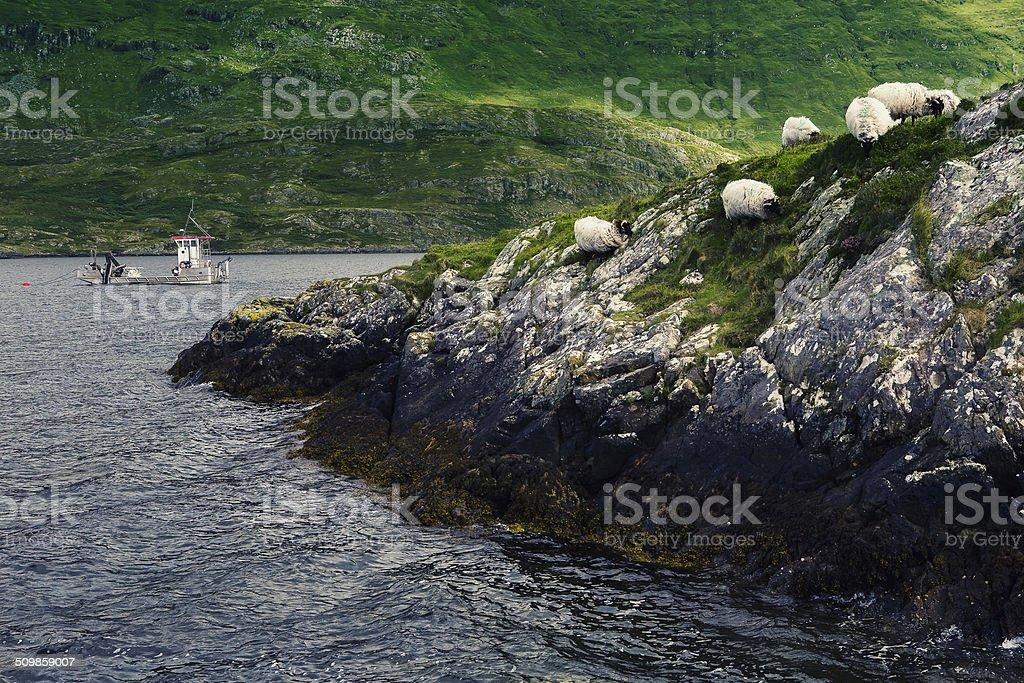 Irish landscape stock photo