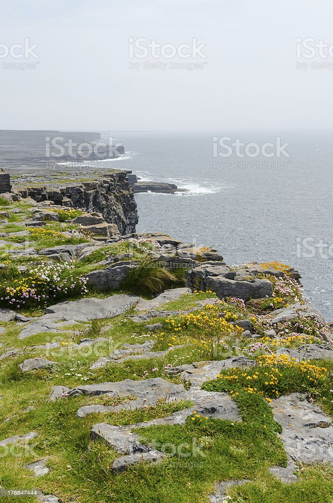 Irish landscape - view from Dun Aengus, an ancient  fort. royalty-free stock photo