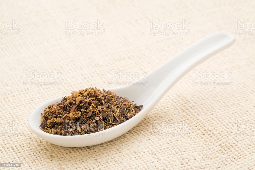 Irish moss seaweed stock photo