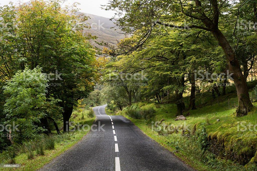 Irish Road, wood stock photo
