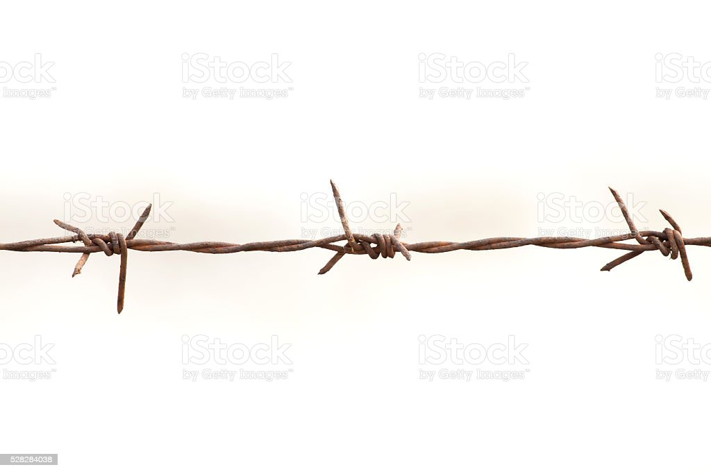Iron barb wire on white background royalty-free stock photo
